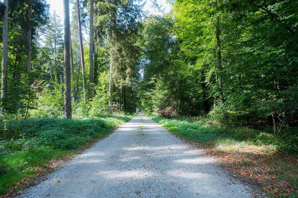 Wandern in Baden Württemberg