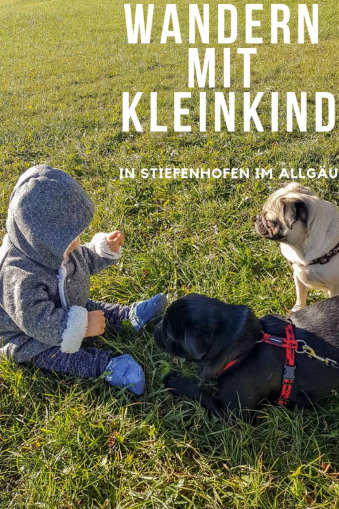 Kinderwagen-Wanderung in Stiefenhofen im Allgäu