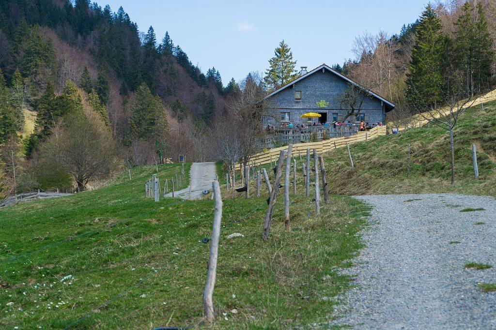 Wandern zur Alpe Sonnhalde