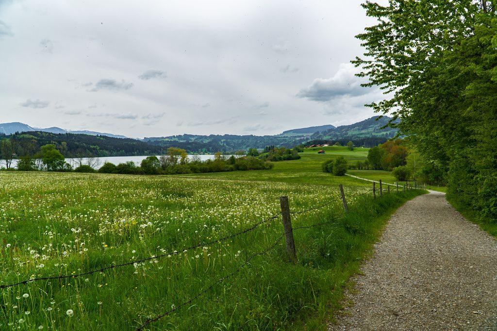 Kinderwagen- Wanderung am Niedersonthofener See Allgäu