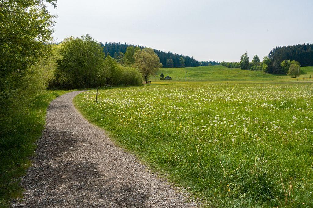 Wandern im Allgäu Niedersonthofen