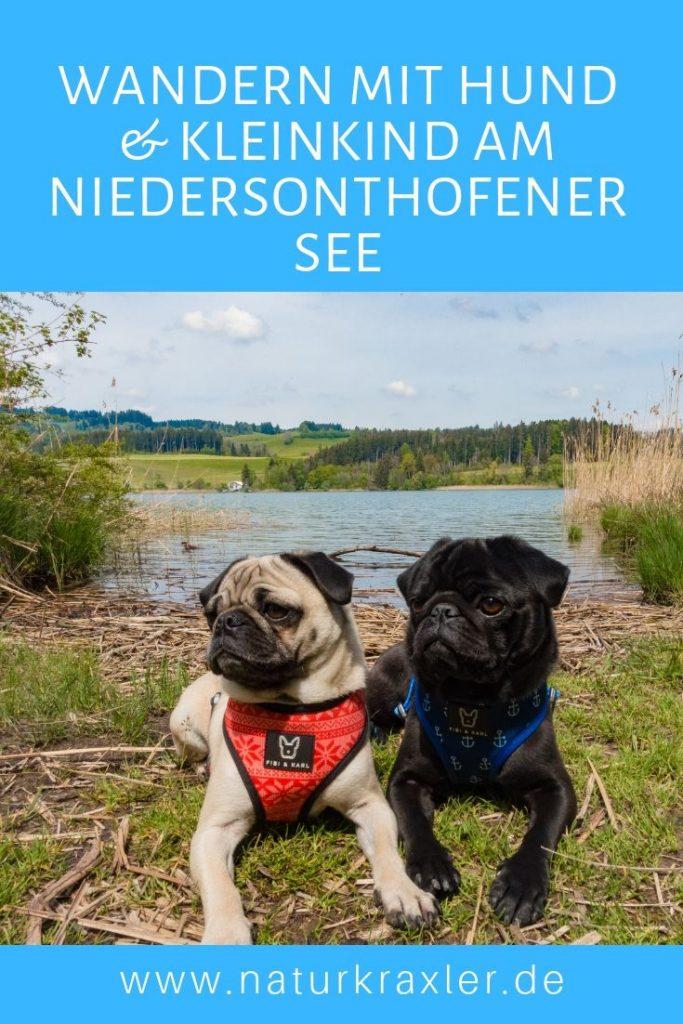 Wandern mit Hund um den Niedersonthofener See