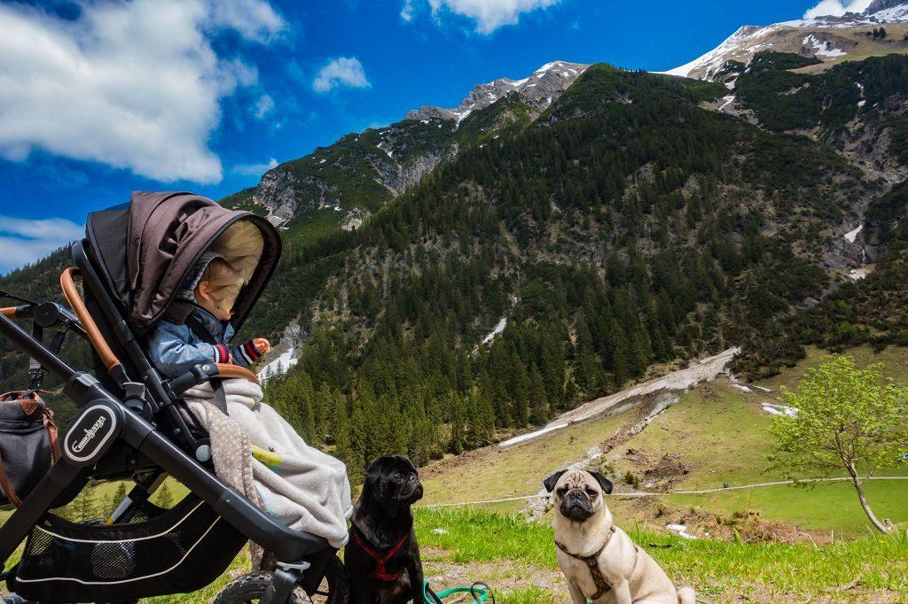 Wandern mit Kind und Hund