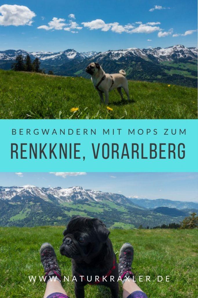 Bergwandern mit Mops