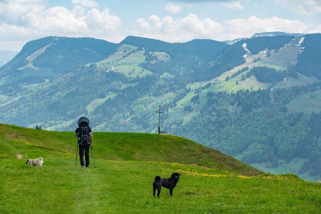 Wandern mit Kind und Hund zur Salmaser Höhe