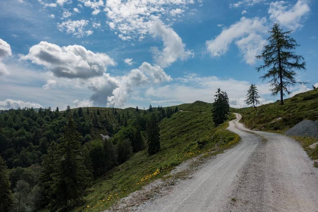 Koasa Trail