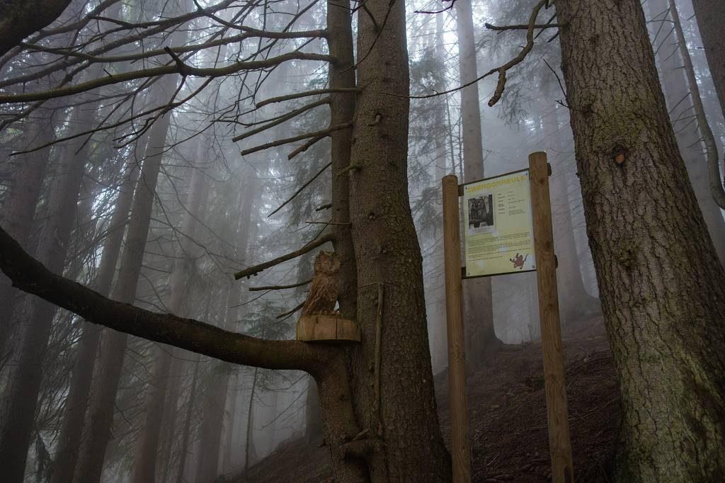 Weitwanderung Koasa Trail
