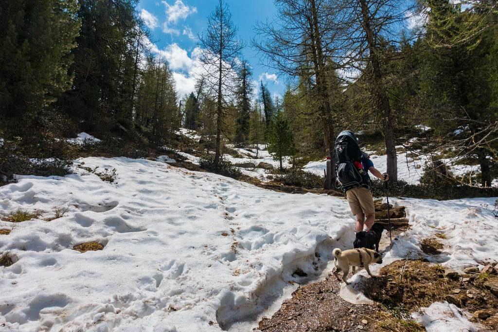 Wandern mit Kraxe Deuter