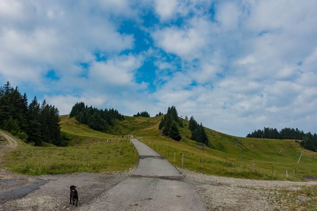 Wandern am Hoch Häderich