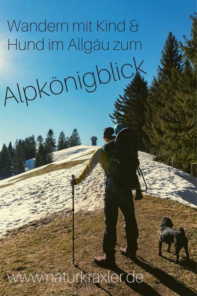 Alpkönigblick